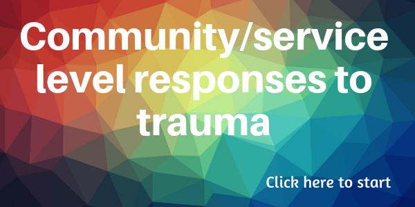 Community/service level responses to trauma
